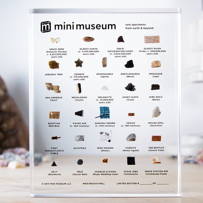 mini museum odd collectibles