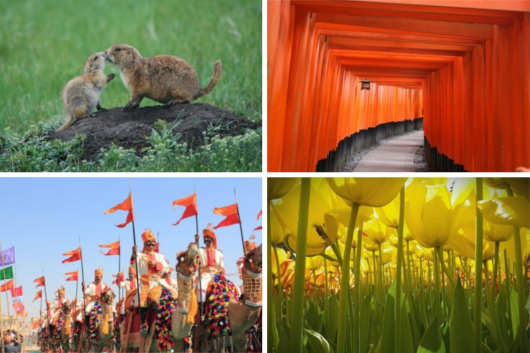 national geographic kids contest winners photography