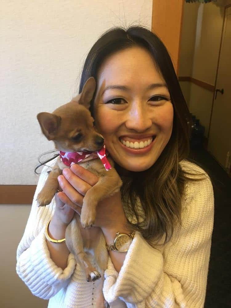 San Francisco Passes Law Requiring Pet Shop Adoption, Not From Animal Mills