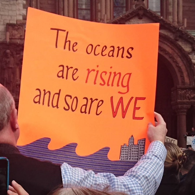 20+ Creatively Geeky Science Rally Signs