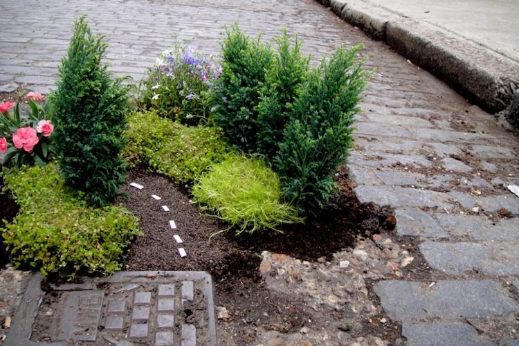 Miniature Pothole Garden by Steve Wheen