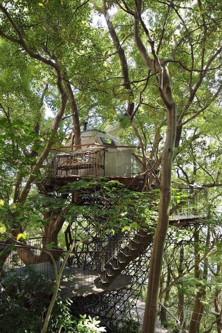 treehouses for grown-ups takashi kobayashi kusukusu treehouse