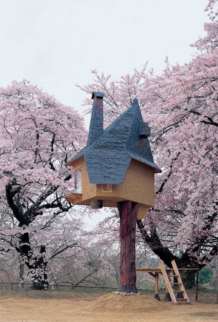 treehouses for grown-ups tetsu teahouse hokuto japan