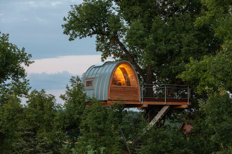 treehouses for grown-ups baumraum oak tree treehouse