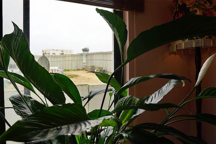 banksy hotel bethlehem separation wall gaza