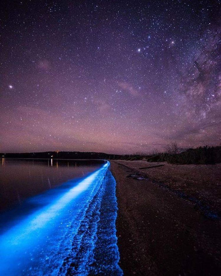 blue glow from sea sparkles