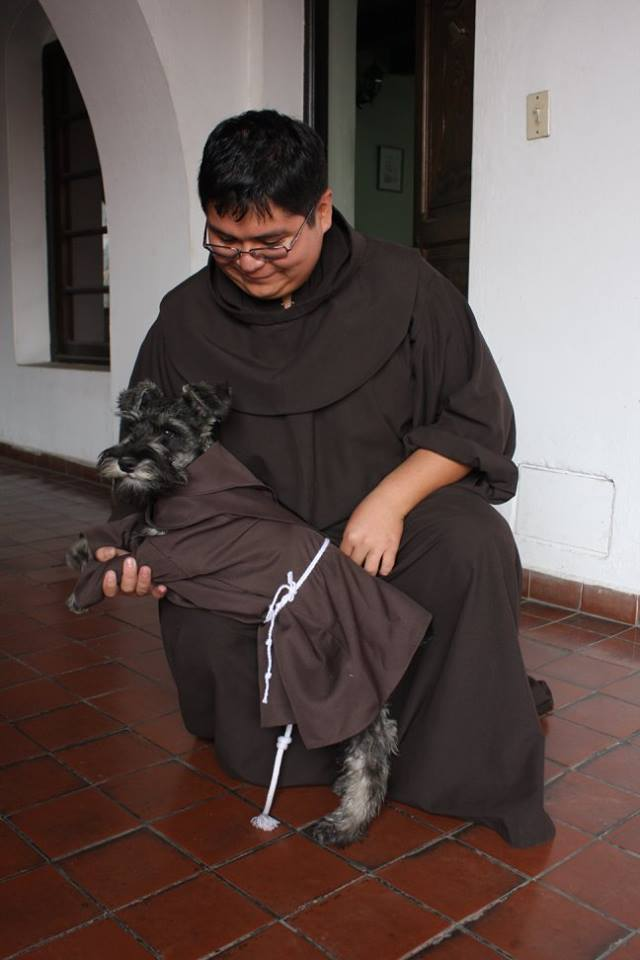 monastery dog friar dog friar bigoton cold nose project