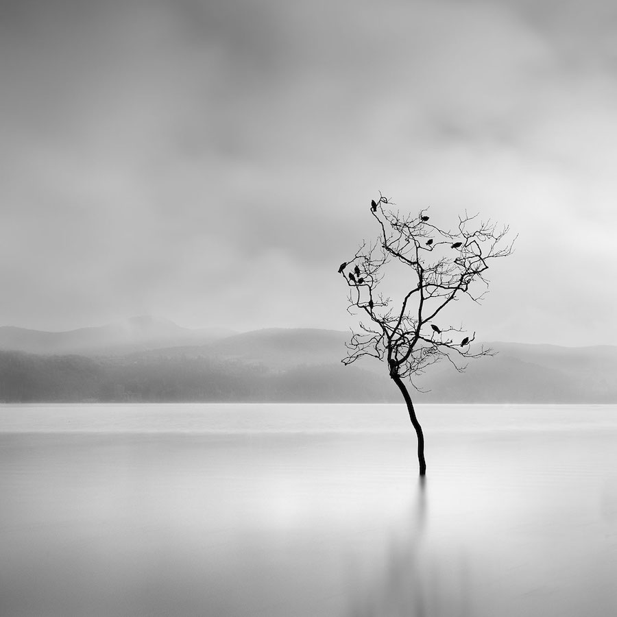 Surreal nature photography by george digalakis is for Minimalisme art