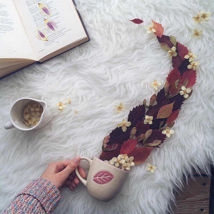 marina malinovaya floral tea story flower teacup photography leaves