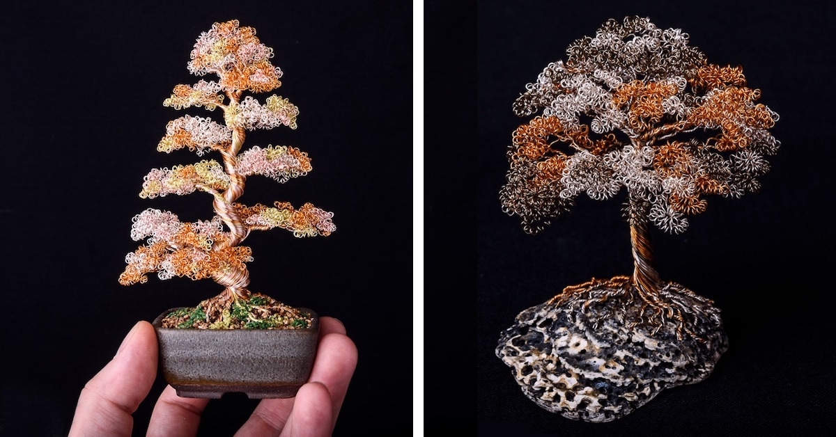 Wire Tree Art Of Bonsai Trees Means Your Plant Will Live Forever