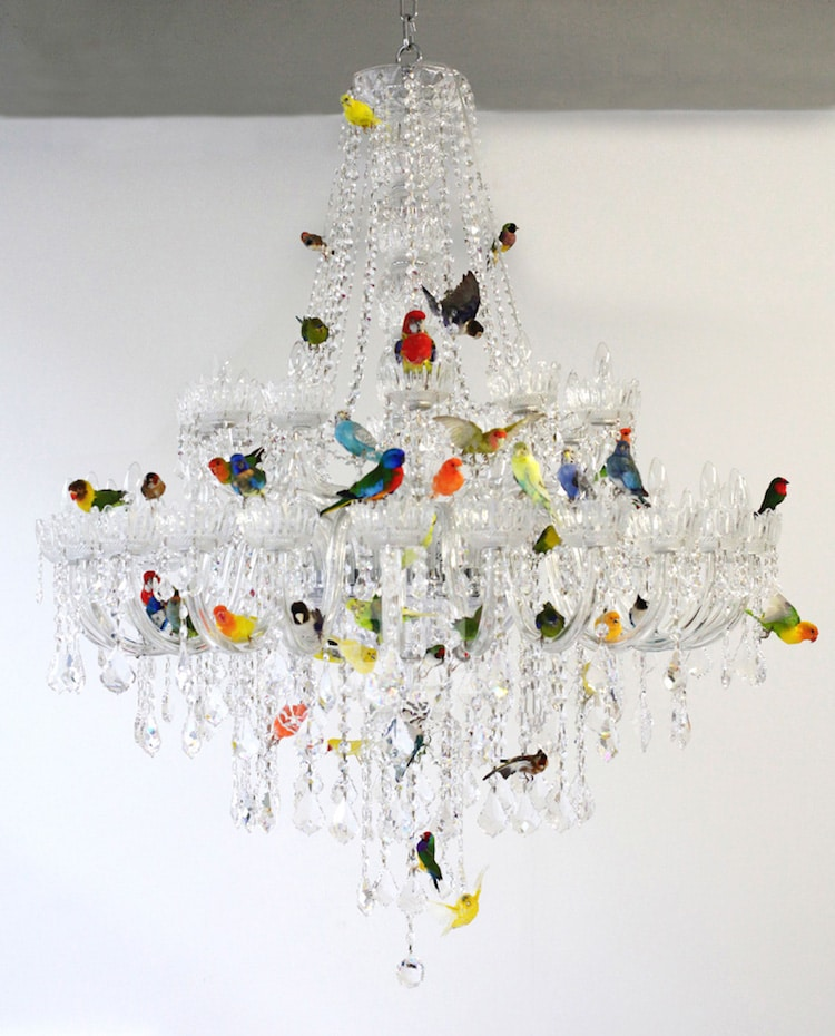 nature-inspired furniture chandelier sebastian errazuriz