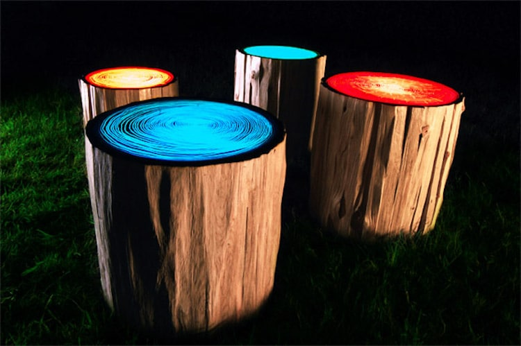 nature-inspired furniture log lamps tree rings