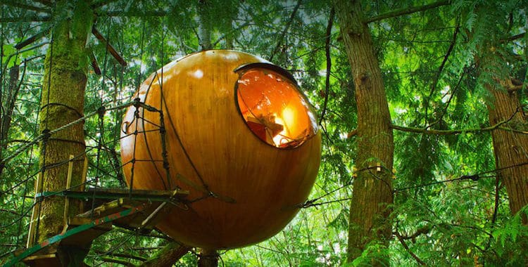 Superb Round Treehouse Cabins Let You Sleep In The Trees Download Free Architecture Designs Viewormadebymaigaardcom