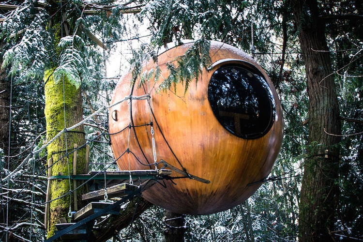 stay in a treehouse treehouse cabins canada round treehouse
