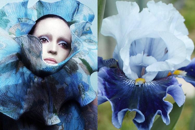 avant garde fashion inspiration