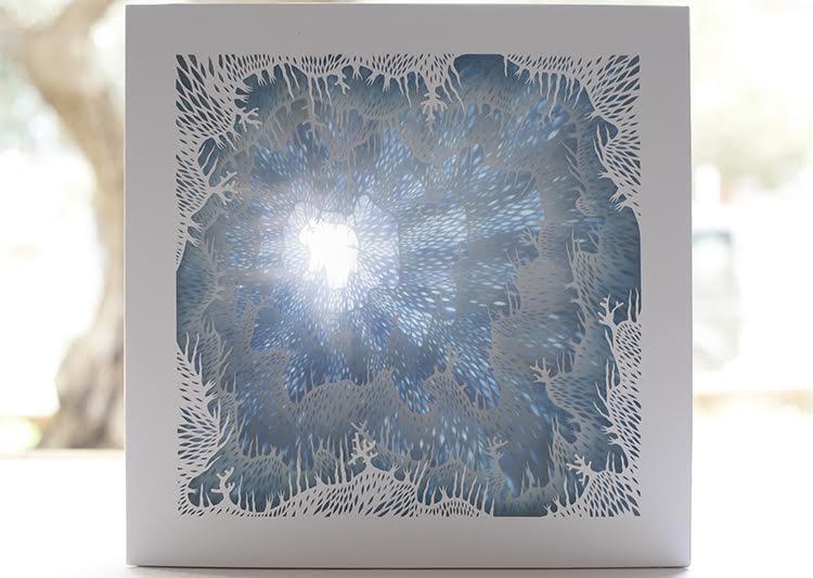 3D Paper Art Box by Elisa Mearelli