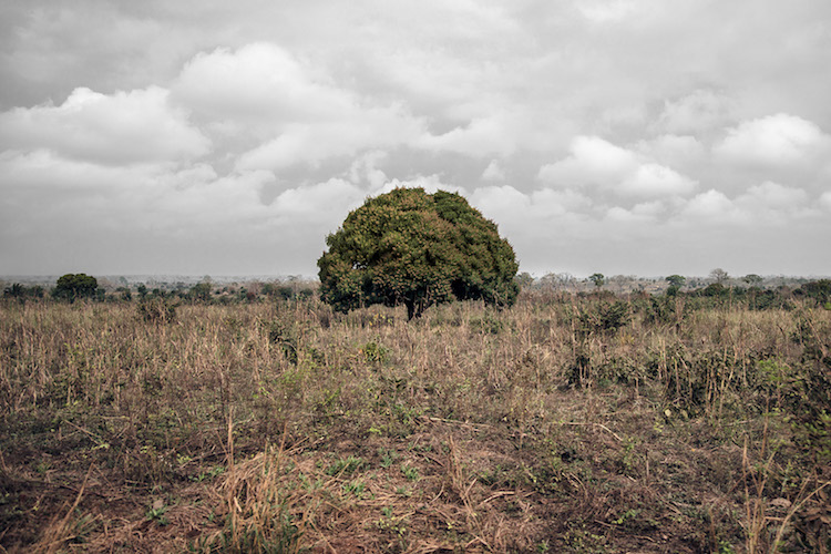 Togo by Gustav Willeit for the Costa Foundation