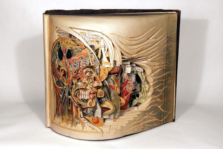 Book Art by Brian Dettmer