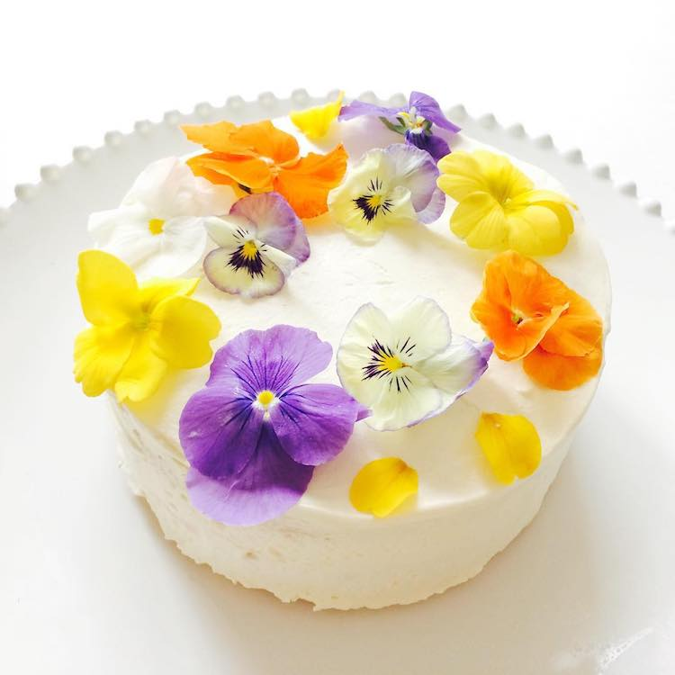 Edible Flower Cakes