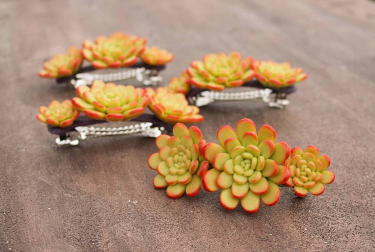 succulent hair clips