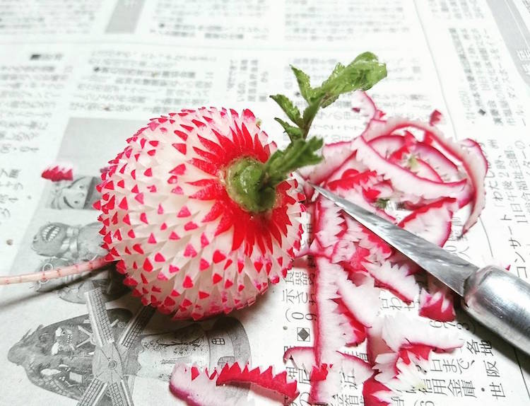 fruit art mukimono gaku