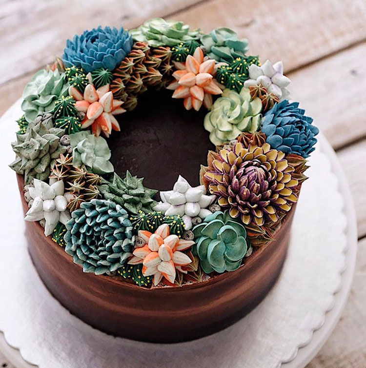Succulent Decorated Cake