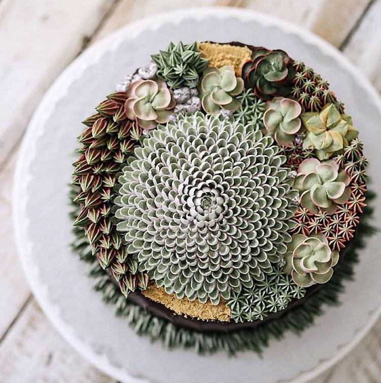 ivenoven succulent cakes cactus flowers terrarium cakes succulent cake nature dessert buttercream frosting