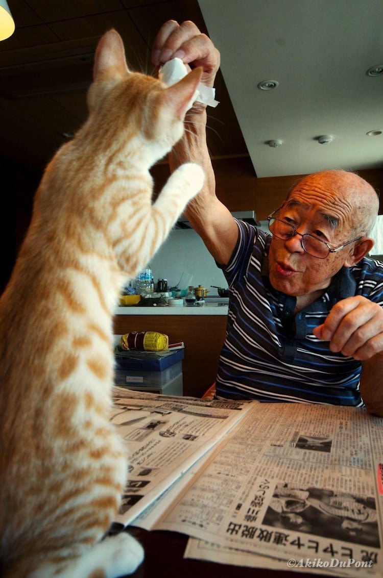 Cat Provides Pet Therapy for Grandfather with Alzheimer's