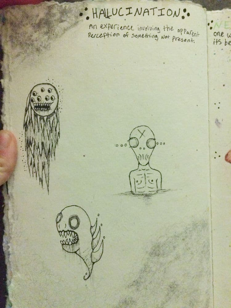 Hallucination Drawings