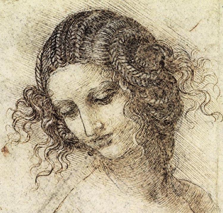 Leonardo da Vinci Famous Line Drawing