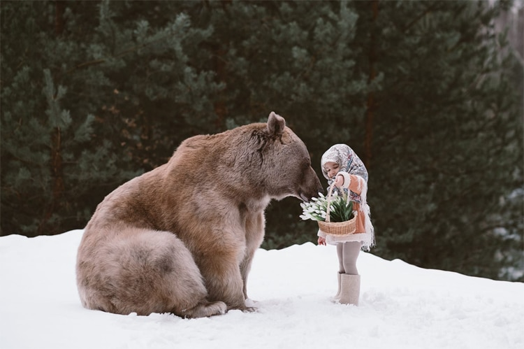 Picturesque Fairytale Photography Made Magical With Real Life Animals - Russian photographer takes enchanting fairytale photos featuring wild animals