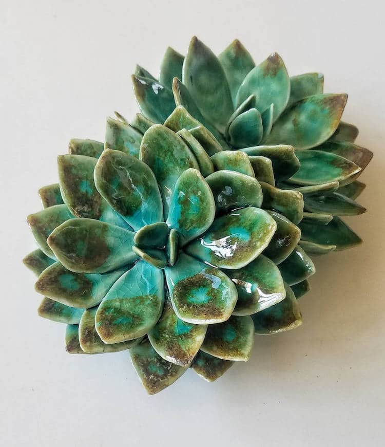 owen mann floramics ceramic succulents ceramic flowers plant sculptures