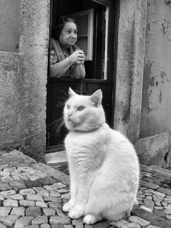 modern street photography