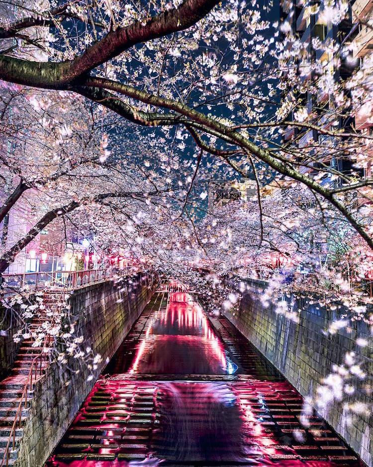 Takashi Komatsubara japan nature photos