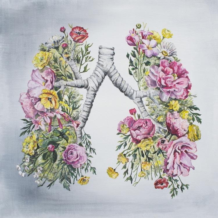 Floral Anatomy Illustrations by Trisha Thompson Adams
