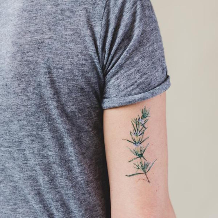Rosemary Tattoos: Herb-Scented Temporary Tattoos By Watercolorist Vincent