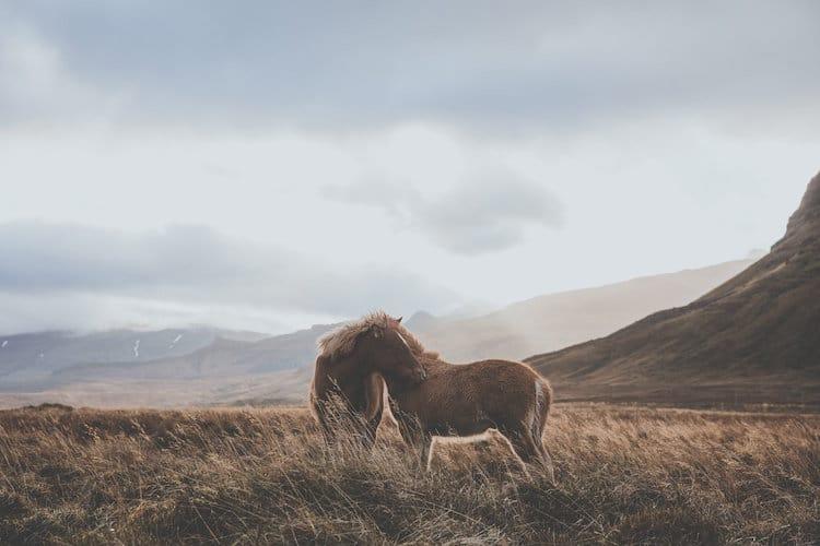 Luke Gram Iceland Travel Photography