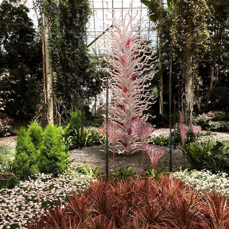 Chihuly Garden Exhibition Presents Over 20 Chihuly Sculptures