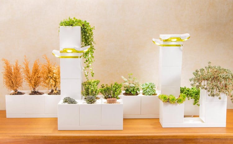 Indoor Garden LeGrow Stackable Planter Boxes Winmart Design