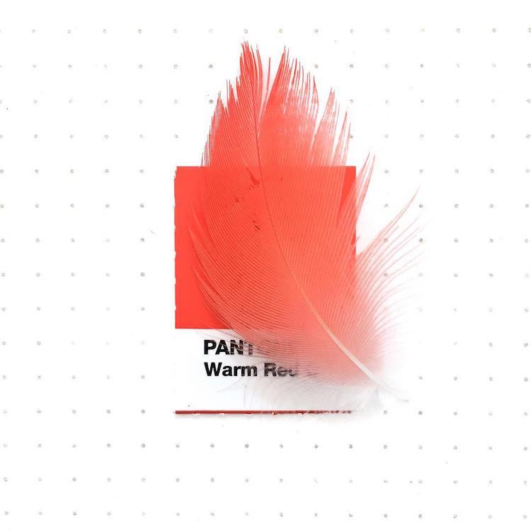 Pantone Color Match Pantone Colors Pantone Book Tiny PMS Match Inka Mathew