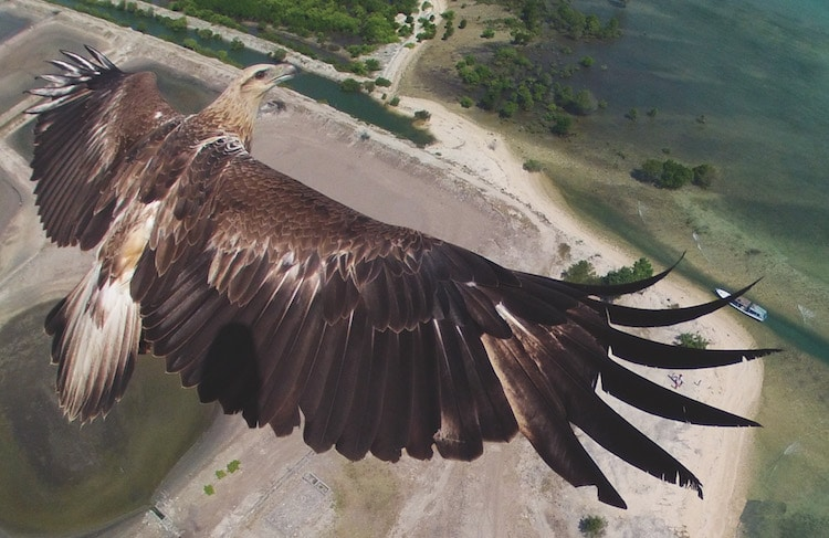 Dronestagram Aerial Photography Dronescapes Drone Photography