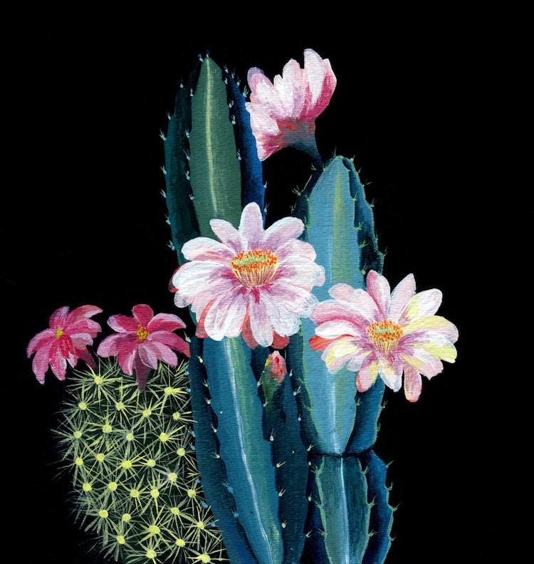 Botanical Illustration Houseplants Paintings Laura Garcia Serventi