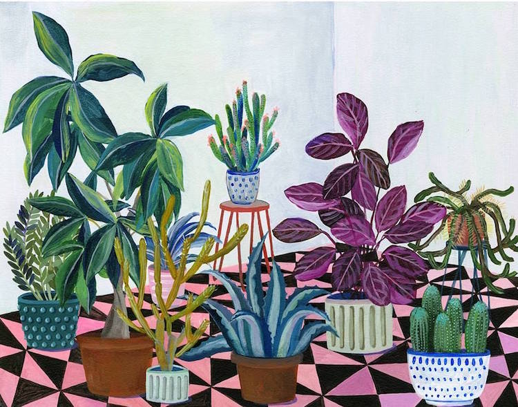 Botanical Illustration House Plants Paintings Laura Garcia Serventi