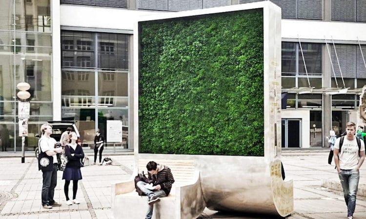 Urban Tree Helps Air Quality