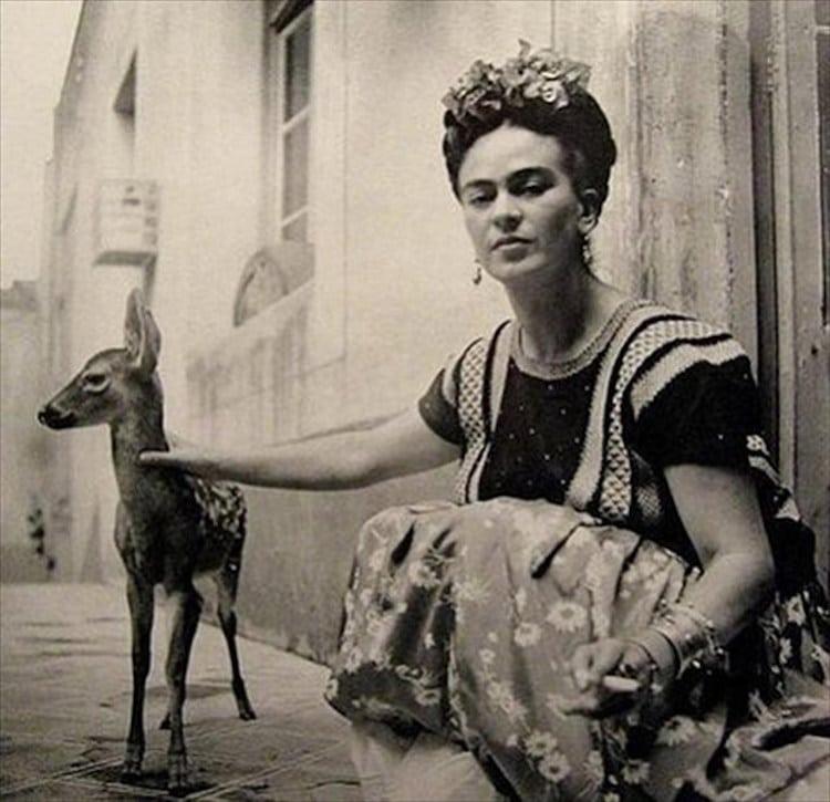 Frida Kahlo Paintings Frida Kahlo Artwork