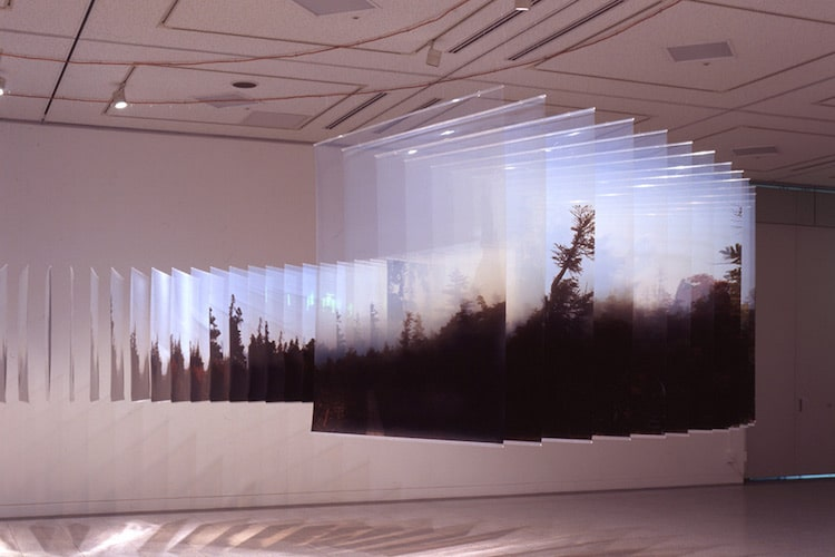 Layer Drawings Nobuhiro Nakanishi Installation Art Photos on Glass