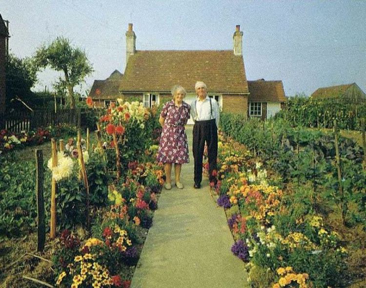 In An English Country Garden by Ken Griffiths Married Life Photo Series