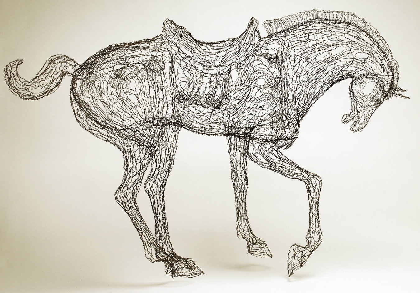 Wire Sculpture by Elizabeth Berrien