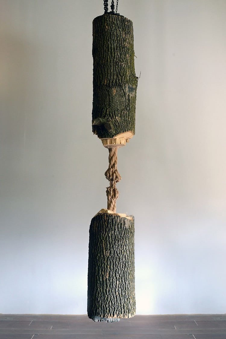 Maskull Lasserre Wood Carving Tree Sculpture Whittling Wood