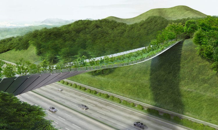Eco Bridge Competition In Korea Finishes With Innovative